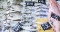 Рыбные секреты: как не попасться на удочку маркетологов