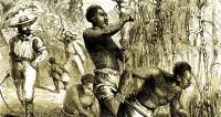 Первых рабов в США освободили 155 лет назад