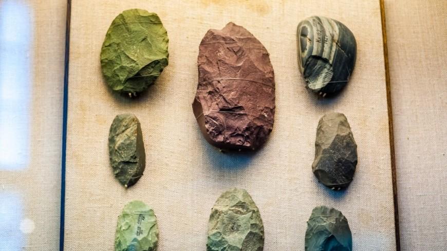 Найденные окаменелости на Крите бросили «вызов» теории эволюции