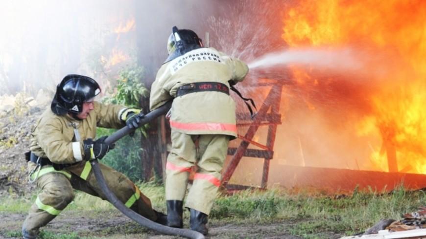 ВРостовской области 2-ой день немогут потушить ландшафтный пожар