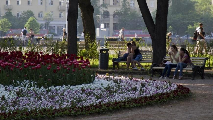 Осенняя московская погода установила температурный рекорд