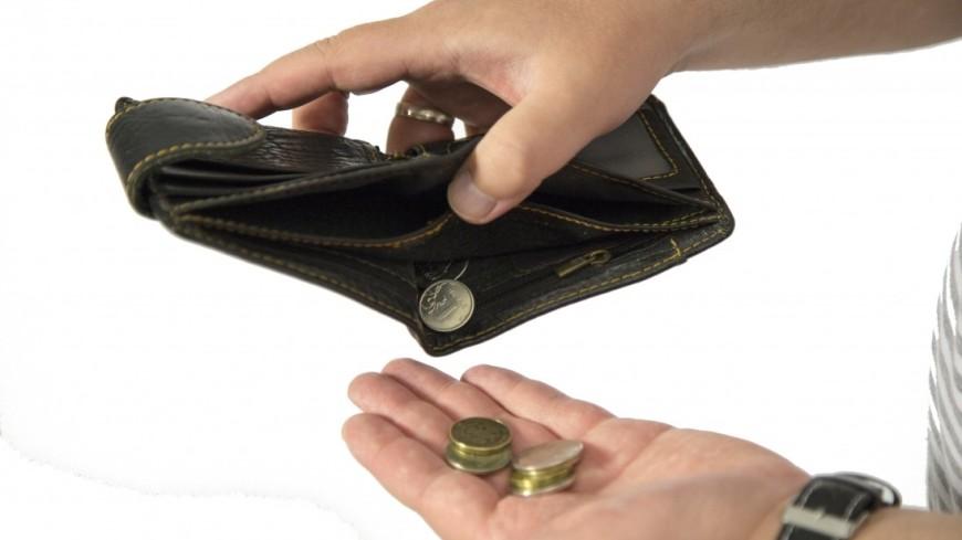 Пустой кошелек,кошелек, деньги, бедность, экономия, бюджет, мелочь,
