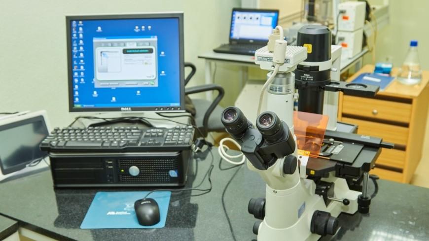 Англичане разработали камеру для поиска эндоскопов в человеческом теле