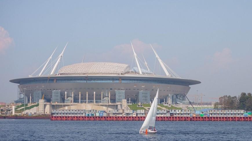 «Провинившийся» баклан станет талисманом стадиона «Санкт-Петербург Арена»