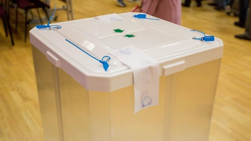 Выборы-2017: МВД заявило оботсутствии серьезных нарушений