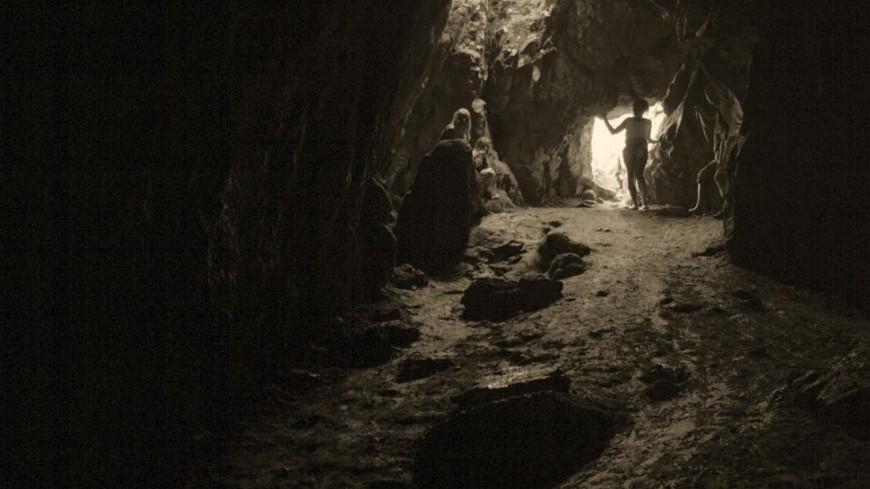 ВТуркмении ученые отыскали новый вид пещерных членистоногих