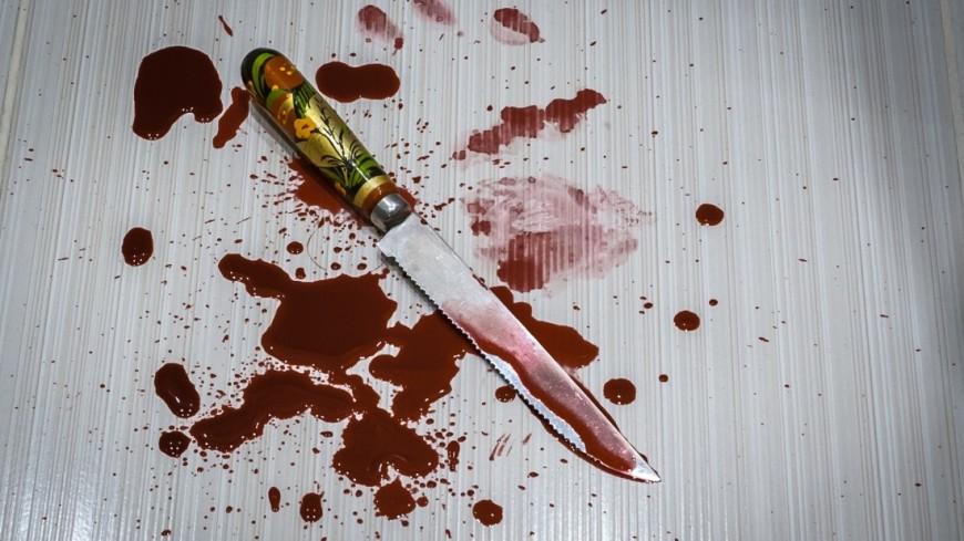 В Подмосковье мужчина в ходе ссоры зарезал жену и дочь