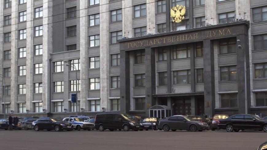Путин призвал Думу освободить пенсионеров от налога на участки в шесть соток