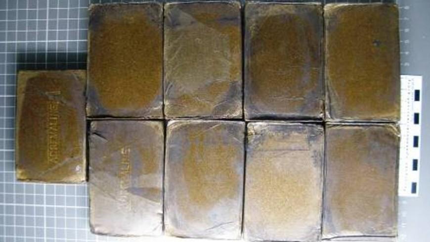 Изъято более 800 кг гашиша у ОПГ, поставлявшей наркотики в страны СНГ