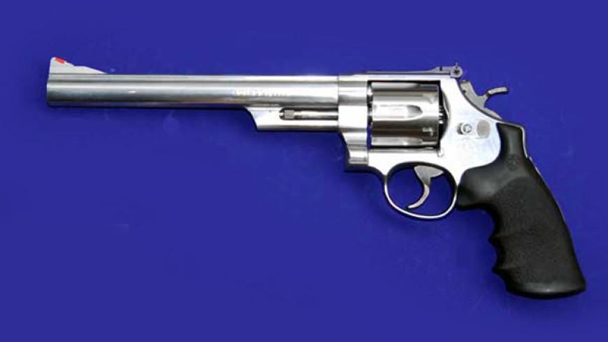 Житель америки привез наКамчатку револьвер для защиты отмедведей