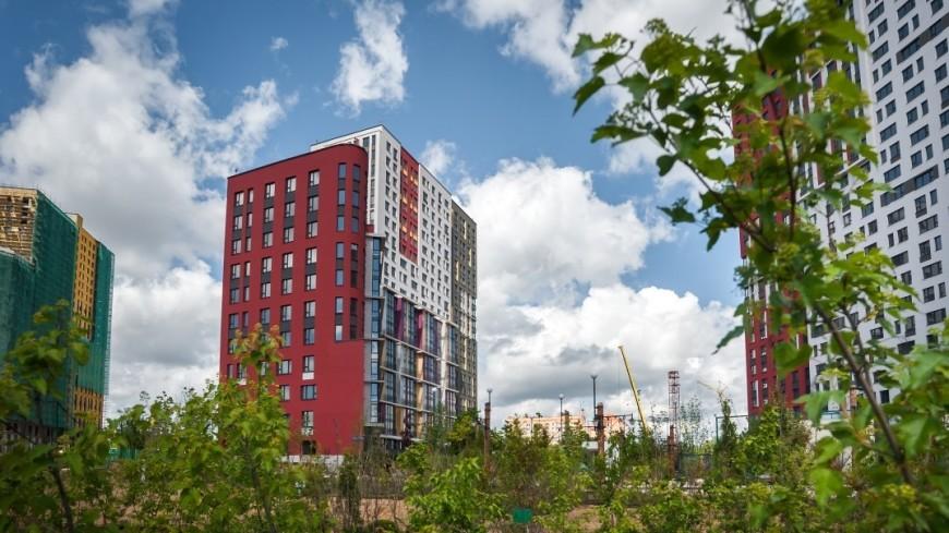 «На парк и речку»: как вид из окна влияет на стоимость аренды