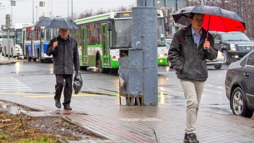 Дожди придут в Москву на всю рабочую неделю