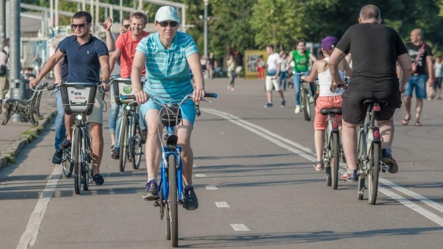 Португальский болельщик проехал по России на велосипеде и пришел в восторг