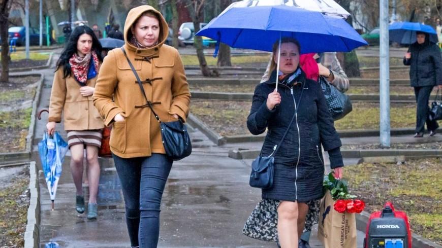 Синоптики: Месячная норма по осадкам в Москве почти выполнена
