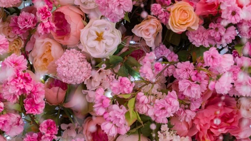 "Фото: Алан Кациев (МТРК «Мир») ""«Мир 24»"":http://mir24.tv/, цветы"