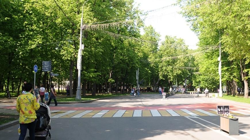 """Фото: Сергей Минеев, """"«Мир 24»"""":http://mir24.tv/, коляска, парк, прогулка, мать, мама, семья"""