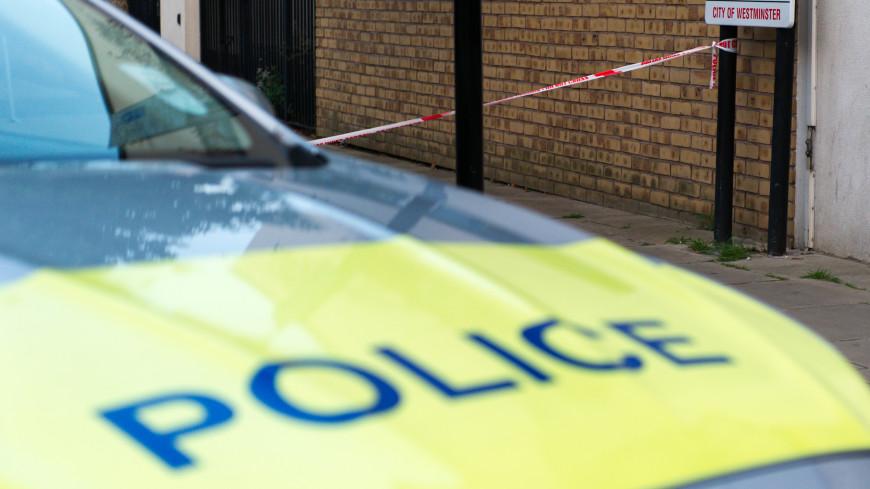 В Лондоне вор случайно ударил сообщника кирпичом по голове