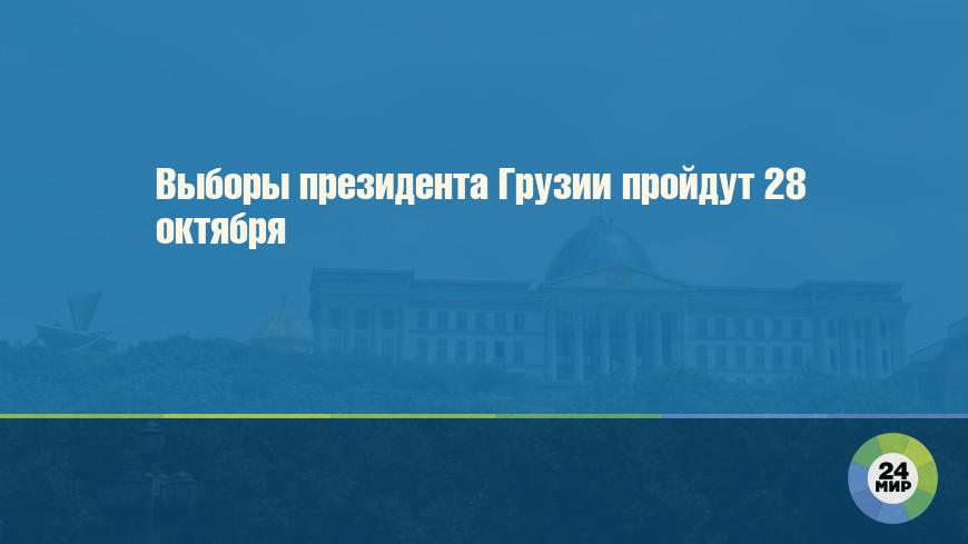 Выборы президента Грузии пройдут 28 октября