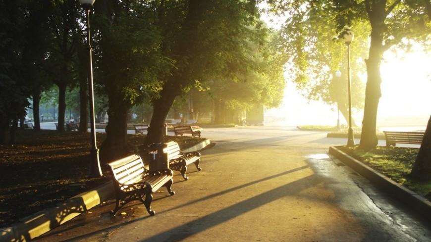 """Фото: Елена Карташова, """"«Мир 24»"""":http://mir24.tv/, утро, парк, сквер, скамья, рассвет"""