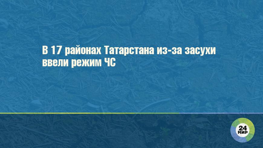 В 17 районах Татарстана из-за засухи ввели режим ЧС