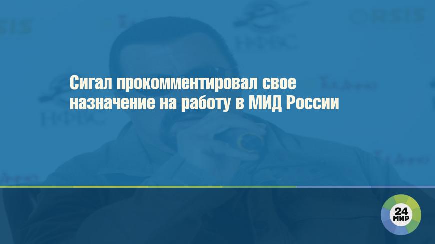 Сигал прокомментировал свое назначение на работу в МИД России
