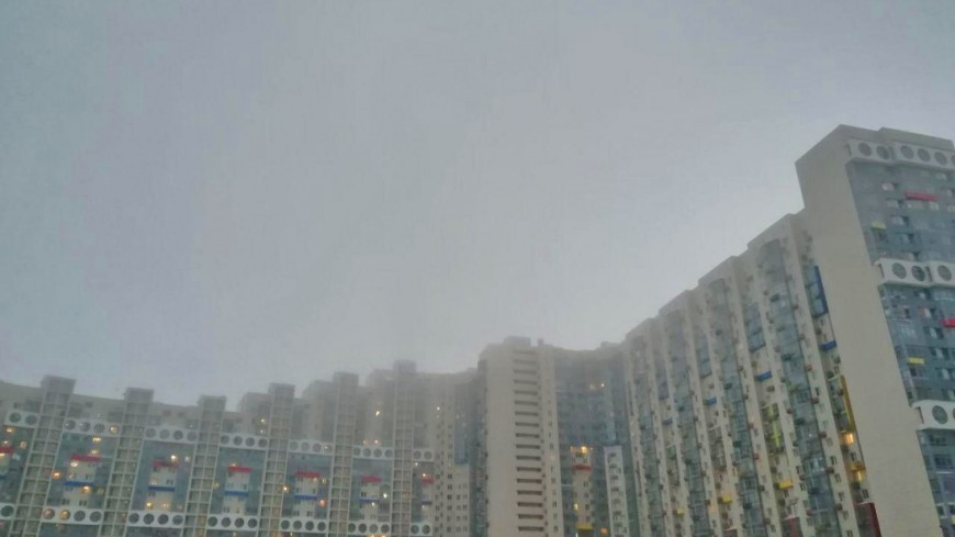туман, москва,