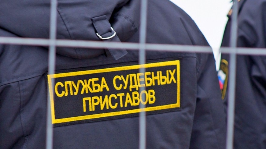 """Фото: Максим Кулачков (МТРК «Мир») """"«Мир 24»"""":http://mir24.tv/, службы судебных приставов, вднх, ввц, снос колеса обозрения, судебные приставы"""