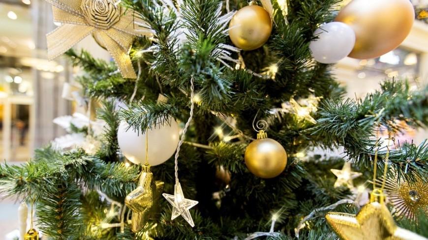 """""""Фото: Алан Кациев (МТРК «Мир»)"""":http://mir24.tv/, елка, новый год, новый год 2016, елочные игрушки, новогодняя ель"""