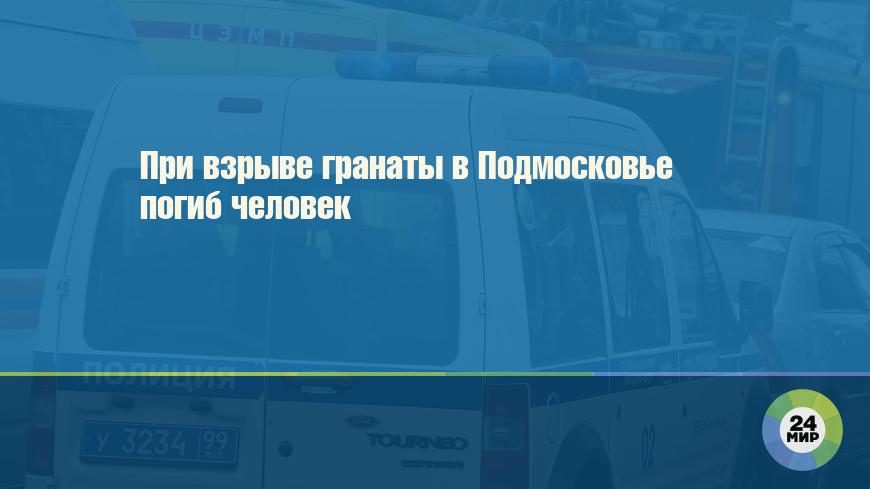 При взрыве гранаты в Подмосковье погиб человек