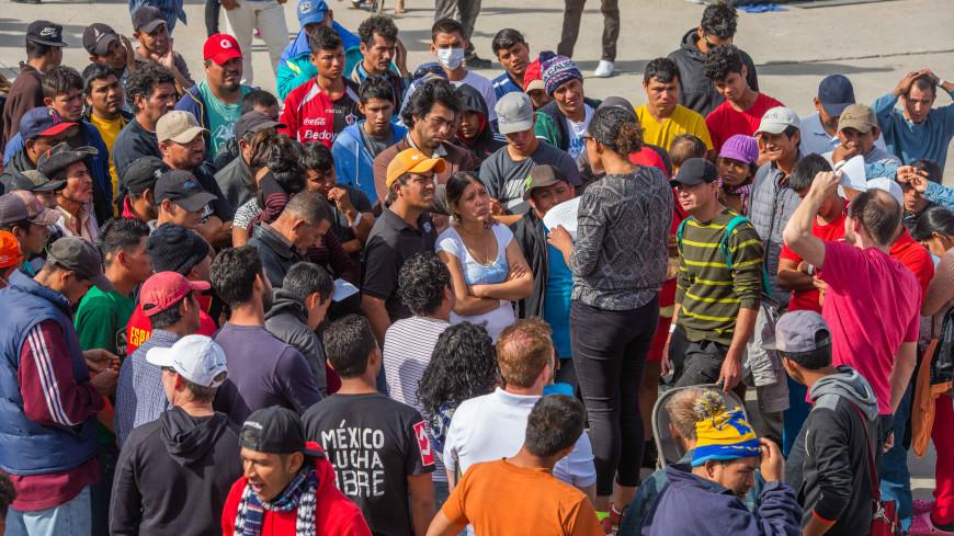Более 400 мигрантов сдались властям США