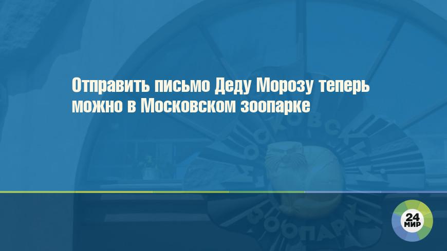 Отправить письмо Деду Морозу теперь можно в Московском зоопарке