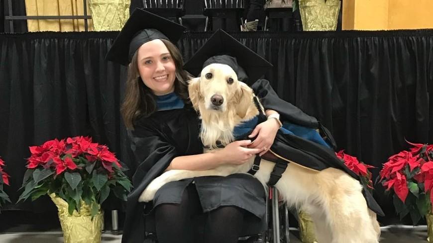 В США собака получила диплом о высшем образовании в области медицины