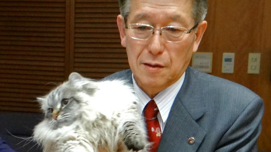 Подаренный Путиным кот Мир растолстел и изучил японский