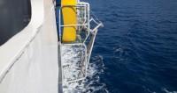На затонувшем корабле найдены останки богатейшего пирата