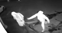 Ограбление века: китаец вместо витрины метнул камень в голову напарника