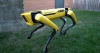 Новый трюк: робота-собаку научили придерживать дверь для друзей