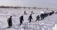 Спасатели в зоне крушения Ан-148 работают в три смены