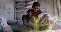 Женщины против мужчин: в Индии начался праздник Холи