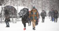 Цена стихии: в Москве посчитали ущерб от снегопада