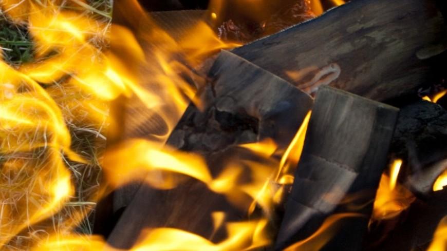 Неандертальцы создавали деревянные орудия с помощью огня