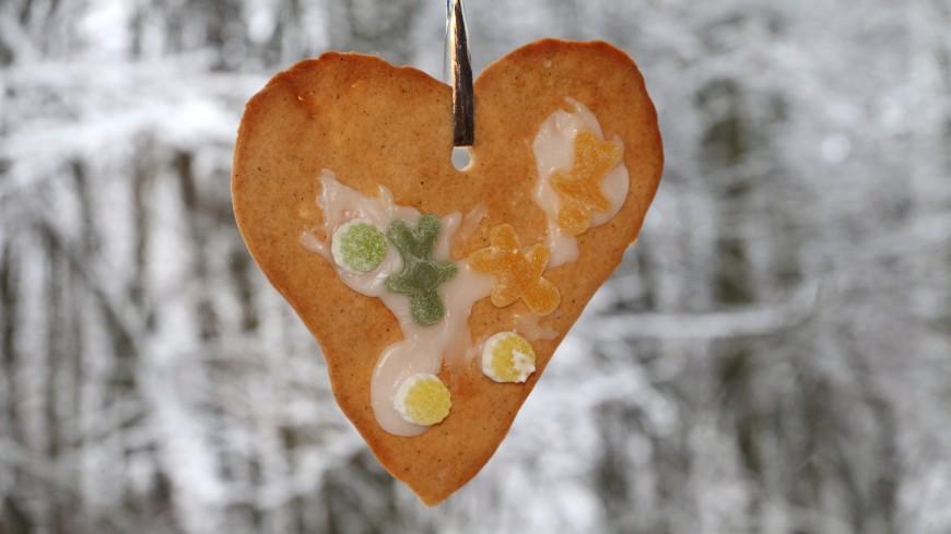 Обитателей Московского зоопарка накормили вкусными «валентинками»