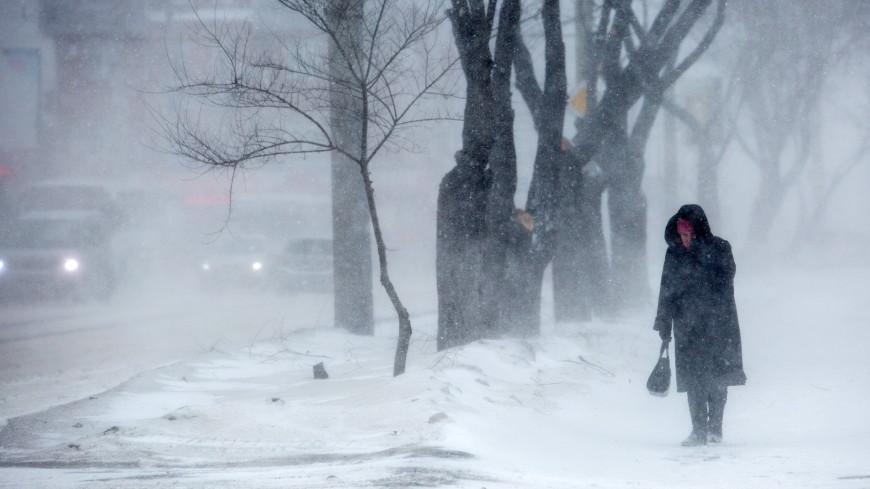 Москвичей предупредили о порывистом ветре