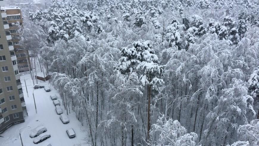 Зима в Москве установила снежный рекорд