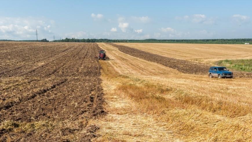Экспорт российской сельхозтехники в Китай увеличился в десять раз