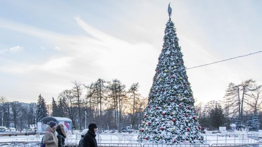 МЧС предупреждает: Москву ждут сильные морозы
