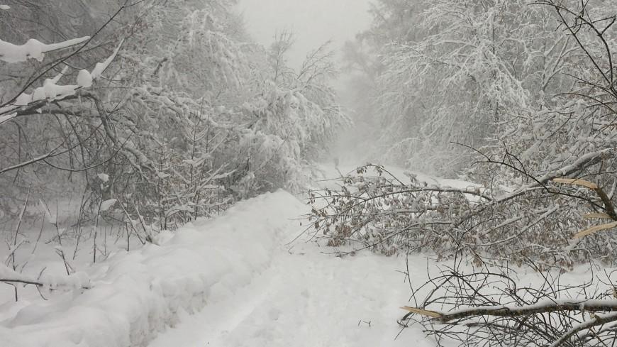 Из-за снегопада в Испании перекрыли более полусотни дорог