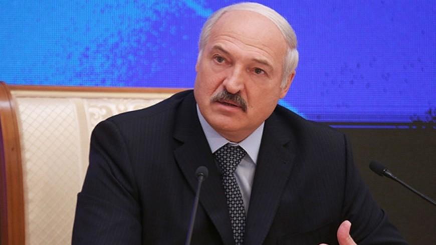 Лукашенко: Белорусские товары нужны Алжиру
