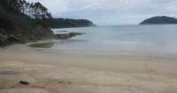 Молодая пара едва не лишилась ног, прогулявшись по пляжу