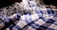 Неожиданно: австралийка проснулась в постели с питоном