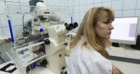 Нескучная наука: есть ли польза от странных открытий